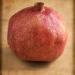 081214_001_V4_pomengranate