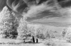 c3-970800_01_panorama.jpg